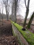15749 Arkna mõisa piirdemüürid, vaade kirde-edelasuunalisele piirdemüürile. foto: 15.11.2013 Anne Kaldam