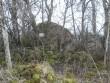 Vaade kaitse all olevale kivile kirdest. 02.01.2014 A. Rudi