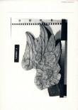 Mälestise reg. nr. 6177 Ludwich Tolli vapp-epitaaf, 1693.saj. figuur varastati 12. veebruaril 1999 Foto: 1998