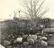 Maa-alune kalmistu. Foto: A. Sillasoo, 01.10.1975.