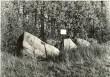 Kultusekivi. Foto: A. Sillasoo, 01.10.1975.
