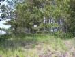 Foto: Tarvi Sits, 04.06.2004.