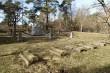 Vabadussõja mälestussammas, reg. nr 27125. Vaade kagust. Foto: M.Abel, kuupäev 12.03.2014