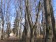 Sissesõit parki on palistatud alleega. Viktor Lõhmus 04.04.2014