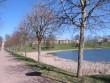 Linnast Raadi mõisa peahoone juurde kulgev pargitee, vasakul peahoone vare. Foto Egle Tamm, 23.04.2014.