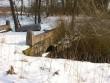 Kurtna mõisa sild 2  Autor Tõnis Taavet  Kuupäev  10.03.2008