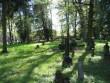 Vana-Jaani kalmistu vanad hauad.Foto Egle Tamm, 16.05.2014.