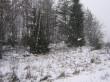 Vaade kagusse. Foto: Ulla Kadakas, 29.02.2008.