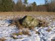 Vaade edelast  Autor Ulla Kadakas  Kuupäev  26.01.2008