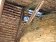 Auk katuses korstna juures.  Autor Kalli Pets  Kuupäev  05.03.2008