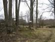 Asula kirde-idaosa, tähis. Foto: Kalli Pets, 12.03.2008.