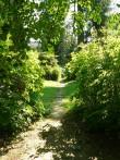 Vaade Kirna mõisa pargi loodeosast peahoone peauksele. Foto 07.08.2014 Anneli Kalm