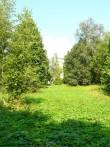 Väinjärve mõisa pargi lõunapoolne aas. Foto 07.08.2014 Anneli Kalm