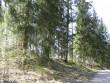 Eesti poolt vasakpoolne kalmistu ja ohverdamiskoha osa. Foto: A. Kivi, 25.04.2008.