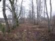 allee. Foto: R. Peirumaa. Kuupäev  09.01.2008