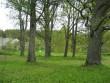 tagaväljak  Autor Riina Pau  Kuupäev  14.05.2008