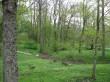 Kuremaa mõisa park Foto: Sille Raidvere Aeg: 07.05.2009