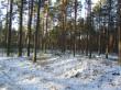 Vaade kääpale talvel varese kinnistu III kääbas. Foto: Viktor Lõhmus, 06.01.2015.