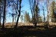Kalmistu, vaade kalmistu põhjaosale. Foto: M.Abel, kp 16.03.15
