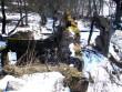 varemed2  Autor Sille Raidvere  Kuupäev  03.04.2008