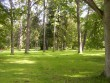 Püssi mõisa park, 19.saj.  Autor Tõnis Taavet  Kuupäev  06.08.2008