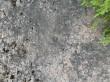 Mõned lohud kivil 10689. Foto 16.06.2015, A. Kivirüüt.
