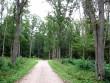 Park  Autor Sille Raidvere  Kuupäev  16.09.2008