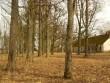 Park peahoone tagaküljel  Autor Sille Raidvere  Kuupäev  27.03.2007