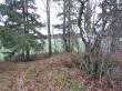 Vaade kivikalmele 10645 kagust, tee poolt. Tähis puude vahel augu servas. Foto 09.11.2015, A. Kivirüüt.