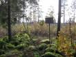 Osa kivikalmest koos metalltahvliga. Foto: Viktor Lõhmus, 14.10.2008.