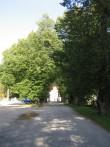 Palmse mõisa alleed 15895:vaade mõisa Peahoone poole ,peaväravate suunas  Autor Anne Kaldam  Kuupäev  24.09.2008