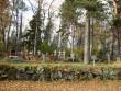 Kalmistu  Autor Sille Raidvere  Kuupäev  15.10.2008