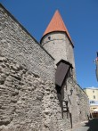 Grusbeke-tagune torn.