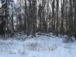 Vaade maa-alusele kalmistule põhjast. Foto: Karin Vimberg, 23.01.2009.