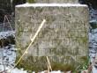 Autor Nele Rent  Kuupäev  26.11.2008