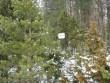 Tõrma hiiemägi. Foto: M. Abel, 20.03.2009.
