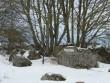 Kivikalme 10358. Foto: M. Abel, 20.03.2009.