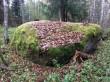 "Ohvrikivi ""Kurjavaimu kivi"" reg-nr 12931, 4.10.2016. Foto: Ingmar Noorlaid"