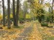 Vana-Roosa kalmistu. Foto Kersti Siim, 6.10.2016.