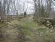 Vaade külatänava alla jäänud kalme alale. Foto: Karin Vimberg, 17.04.2009.