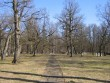 II maailmasõjas hukkunute matmispaik, reg. nr 22300. Vaade lõunast, keskel puitrist. Foto: Anne Kaldam, kuupäev 21.04.2009