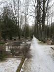 Pauluse kalmistu vaade. Foto Egle Tamm, 25.01.2017.