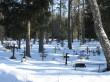 Vaade kalmistule põhjapoolse värava juurest. Foto Kersti Siim, 7.02.2017.