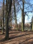 Karlova park Pargi tänava poole vaadatuna. Foto Egle Tamm, 04.04.2017.