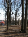 Karlova park pargiteega kõrvuti kulgeva puuderiviga. Foto Egle Tamm, 04.04.2017.