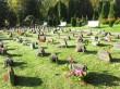 Jaama 122 Rahumäe kalmistu uue osa murualal paiknevad hauatähised. Foto Egle Tamm, 28.09.2017.