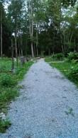 Valjala kalmistu kruusatud tee. Foto: Keidi Saks, 26.07.2017