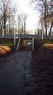 Adavere mõisa parki läbiv tunnel Foto: Sille Raidvere Aeg: 16.11.2017