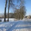 Sõmerpalu mõisa pargi põhjaosa. Foto Mirja Ots, 5.02.2018