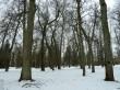 Uhtna mõisa park. Foto: Raili Uustalu 14.03.2018. Vaade tihedama puistuga alale lõuna suunas. Juurde on istutatud palju puid, mis ähmastavad mõisaaegset pargi ruumistruktuuri.